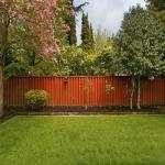 Най-добрите начини да имаме красива градина