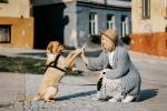Често срещани грешки на (бъдещи) собственици на кучета – част 1